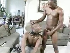 black doggystlye fucked doggy