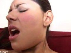Porno Porno - Cici Amor