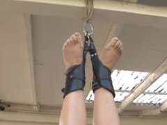 suspended upside down and tickled