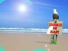 Safada Chupando o Pau De Um Macho Estranho Na Praia