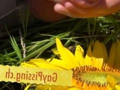young gay squirts and pisses on sunflower