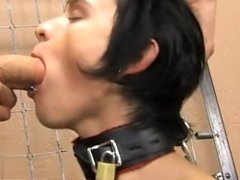 Hot twink Miles gets fettered to the wall and meets the business end of