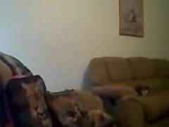 free live sex webcam shows - xdatexx.com