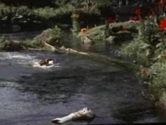 Jorge Rivero (a.k.a. George Rivers) as Adam -swimming