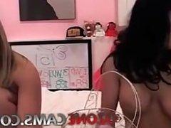 Porn Live Cam  Free Webcam Adult