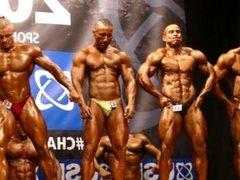 MUSCLEBULL #42 NABBA Universe 2014, Men 2 - Comparison 2