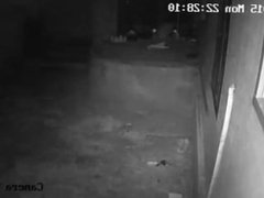 Guy caught on spy cam while peeping in bath room