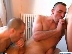 1 guy get sucked by 2 handsome athletics guys with huge cock !