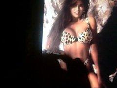 Bikini Babe Cum Tribute 2