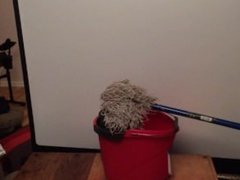 Hot mop fucks