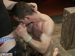 Horny hunks blowjob lesson