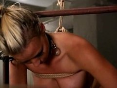 Robyn Truelove-Bound And Fucked