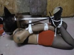 Tape Gagged Masked & Hogtied Bondage