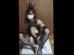 Asian CD - Insane Bunny