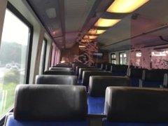 Public Train Wank 13