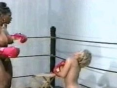 Interracial 90s Lesbian Big Tit Boxing