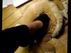 Trample Teddy Bear (french friend)