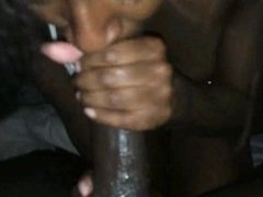 Black chick sucking on her amore's cock