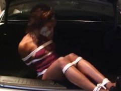 Damsel in the trunk
