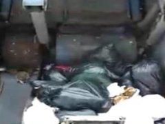 Annina Ucatis #In den Müllpresswagen rein du scheiss Transvestitenschwein