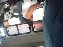 bus verga 2