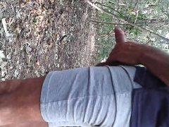 Cruising woods - Cruising nel bosco1