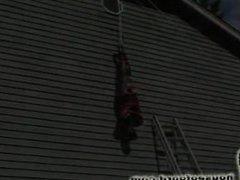 House of Gord,Dangling Damsel