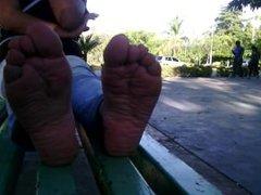 pies rico de venezolana olorosas plantas