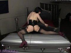 Vampire in Coffin - Larkin Love
