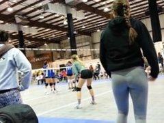 Volleyball Coach Ass