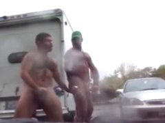 naked bears in public