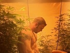 Quickie in the grow! Tight pussy didn't last long ;)