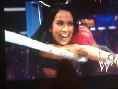 WWE Diva AJ Lee Tribute 01
