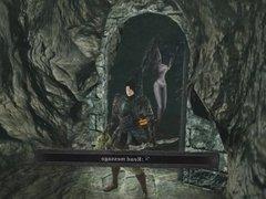Let's Play (With Myself) - Dark Souls II part 03