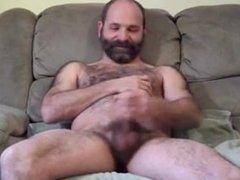 bear in sofà