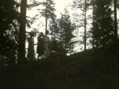 Vintage Movie - Fäbodjäntan (Swedish movie)
