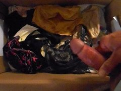 of bras in the box ...