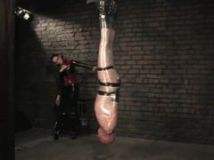plastic wrapped slave suspended shocked and slapped by latex mistress