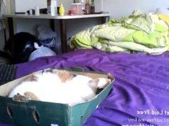 babe misshowl flashing ass on live webcam - www.find6.xyz