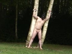 Mistress ties slave to tree and whips him before fucking bbc