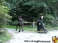 Here comes the roman goddess on a ponygirl chariot