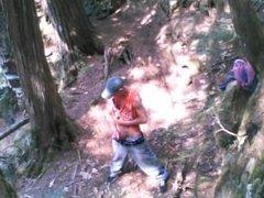 Forest stroking #3