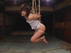 japanese rope bondage DDT 1