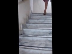 Gata na escada