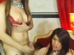 Busty Shemale Does Reverse Cowgirl and Lets F