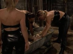 Slaves zapped by mistress for fun and pleasure