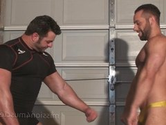 Wrestling Muscle Hunks