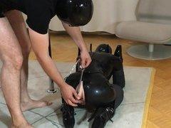 Bupshi - black latex pet