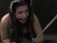 Rough kitty play session for skanky submissive