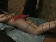 Candle Wax Tortured 6